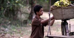 photo 8/11 - L'Enfant de Goa - © Sophie Dulac Distribution