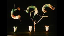 photo 19/23 - Le Petit Parapluie - Quel cirque ! - © Malavida Films