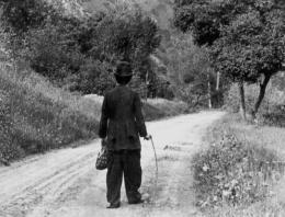 photo 4/4 - Charlot vagabond - Charlot sur la route - © Tamasa