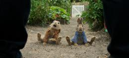 photo 4/14 - Pierre Lapin - © Sony Pictures