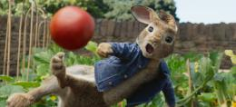 photo 14/14 - Pierre Lapin - © Sony Pictures