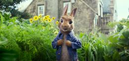 photo 12/14 - Pierre Lapin - © Sony Pictures
