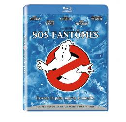 photo 2/6 - Pack Blu-ray - SOS Fantômes - © Sony Pictures Home Entertainment (SPHE)