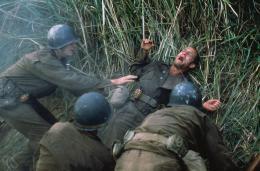 photo 3/15 - Woody Harrelson - La Ligne Rouge - © Fox Pathé Europa (FPE)