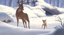 Bambi 2 photo 3 sur 24