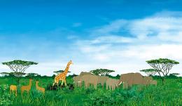 photo 11/34 - Kirikou et les bêtes sauvages