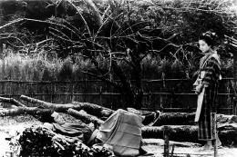 photo 20/24 - Barberousse - © Wid Side