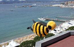 photo 207/217 - Bee Movie à Cannes - Bee Movie - Drôle d'Abeille - © Paramount