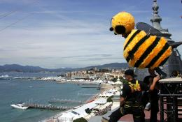 photo 208/217 - Bee Movie à Cannes - Bee Movie - Drôle d'Abeille - © Paramount