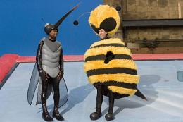 photo 177/217 - Chris Rock et Jerry Seinfeld - Bee Movie - Drôle d'Abeille - © Paramount