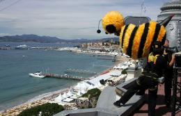photo 209/217 - Bee Movie à Cannes - Bee Movie - Drôle d'Abeille - © Paramount