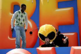 photo 191/217 - Chris Rock et Jerry Seinfeld - Bee Movie - Drôle d'Abeille - © Paramount