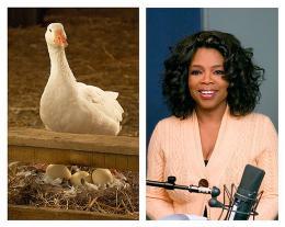 Oprah Winfrey Le Petit Monde de Charlotte photo 8 sur 8