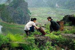 Xiao-Ran Li LES FILLES DU BOTANISTE photo 6 sur 12