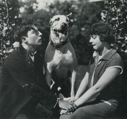 photo 11/17 - Buster Keaton et Ruth Dwyer - Les Fiancées En Folie - © Splendor Films