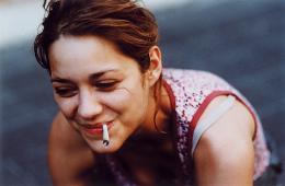 photo 373/393 - SAUF LE RESPECT QUE JE VOUS DOIS - Marion Cotillard