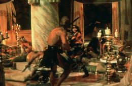 photo 14/23 - Arnold Schwarzenegger - Conan le barbare - © Fox Path� Europa