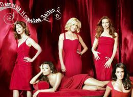 photo 45/49 - Saison 5 - Teri Hatcher, Dana Delany, Felicity Huffman, Marcia Cross, Eva Longoria Parker - Desperate Housewives - Saison 5 - © Canal +