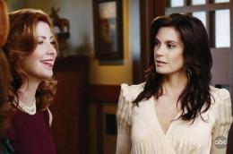 photo 20/49 - Dana Delany, Teri Hatcher - Saison 5 - Desperate Housewives - Saison 5 - © ABC