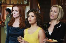 photo 19/49 - Marcia Cross, Eva Longoria, Felicity Huffman - Saison 5 - Desperate Housewives - Saison 5 - © ABC