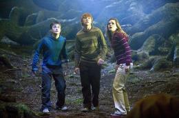 photo 68/127 - Daniel Radcliffe, Rupert Grint, Emma Watson - Harry Potter et l'ordre du Phénix - © Warner Bros
