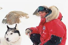 Antartica, prisonniers du froid photo 1 sur 39