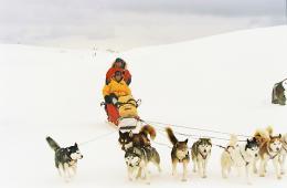 Antartica, prisonniers du froid photo 7 sur 39