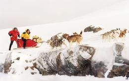 Antartica, prisonniers du froid photo 6 sur 39