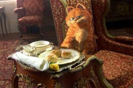 photo 7/30 - Garfield 2 - © 20th Century Fox
