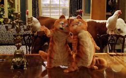 photo 13/30 - Garfield 2 - © 20th Century Fox
