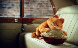 photo 14/30 - Garfield 2 - © 20th Century Fox