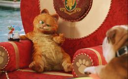 photo 21/30 - Garfield 2 - © Fox Pathé Europa