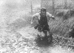 Les Sept Samouraïs Toshiro Mifune photo 6 sur 16