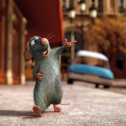 photo 14/122 - Ratatouille - Ratatouille - © BVI