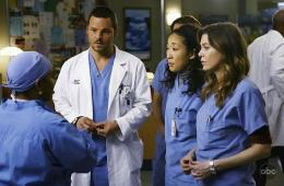 photo 95/308 - Justin Chambers, Sandra Oh, Ellen Pompeo, Chandra Wilson - Saison 5 - Grey's Anatomy - © ABC