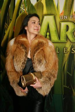photo 105/117 - Avant-première à Paris d'Arthur et les Minimoys (novembre 2006) - Michelle Yeoh - © Isabelle Vautier pour Commeaucinema.com