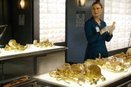 Emily Deschanel Bones Saison 9 photo 4 sur 15
