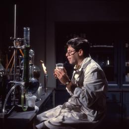 photo 3/13 - Jerry Lewis - Docteur Jerry et mister Love - © Flash Pictures