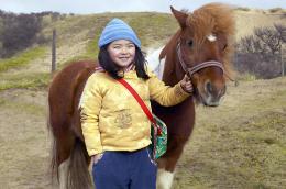 photo 3/5 - Le cheval de Saint-Nicolas - © Les Films du Préau
