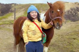 photo 2/5 - Le cheval de Saint-Nicolas - © Les Films du Préau