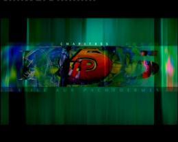 photo 1/2 - IP5, l'�le aux pachydermes - © M6 Vid�o