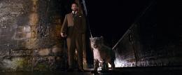 photo 42/100 - Daniel Craig - A la croisée des mondes : La boussole d'or - © Métropolitan Film