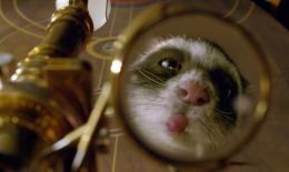 photo 48/100 - A la croisée des mondes : La boussole d'or - © Métropolitan Film
