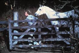 Equus Peter Firth photo 3 sur 9