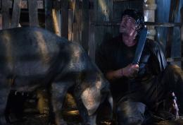 photo 146/172 - John Rambo - Sylvester Stallone - © M�tropolitan Film