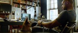 photo 24/41 - Will Smith - Je suis une Légende - © Warner Bros
