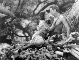 Johnny Weissmuller Tarzan, l'homme singe photo 7 sur 14