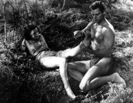 Johnny Weissmuller Tarzan, l'homme singe photo 8 sur 14