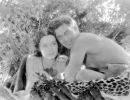 Johnny Weissmuller Tarzan, l'homme singe photo 4 sur 14
