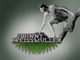 Johnny Weissmuller Tarzan, l'homme singe photo 10 sur 14